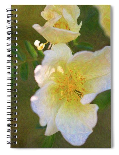 White Rose - Blushing Bride - By Omaste Witkowski Spiral Notebook