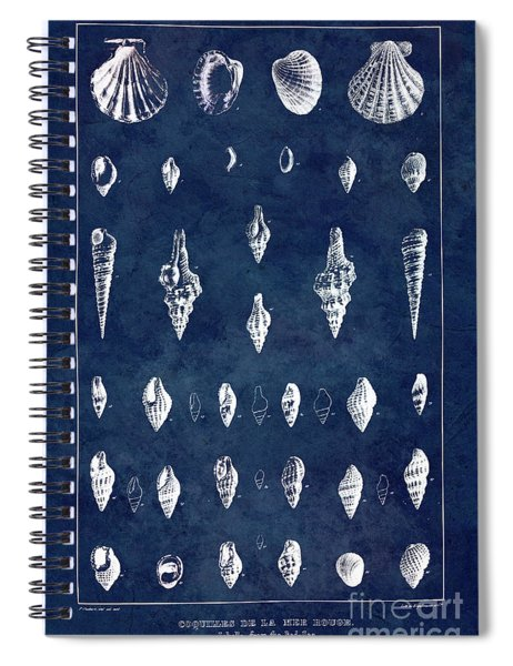 White Shells On Blue Spiral Notebook