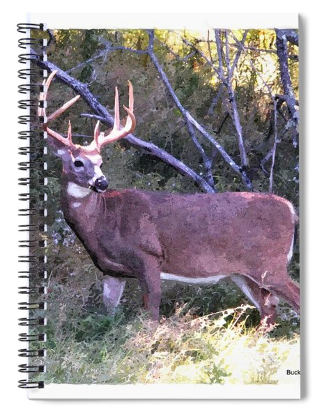 White-tail Buck Spiral Notebook