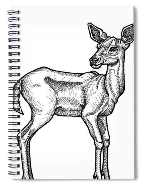 White Tailed Doe Spiral Notebook