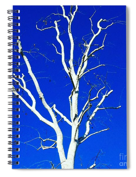 White Tree Spiral Notebook