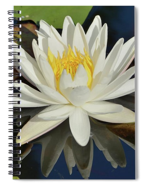 White Water Lily-square Spiral Notebook
