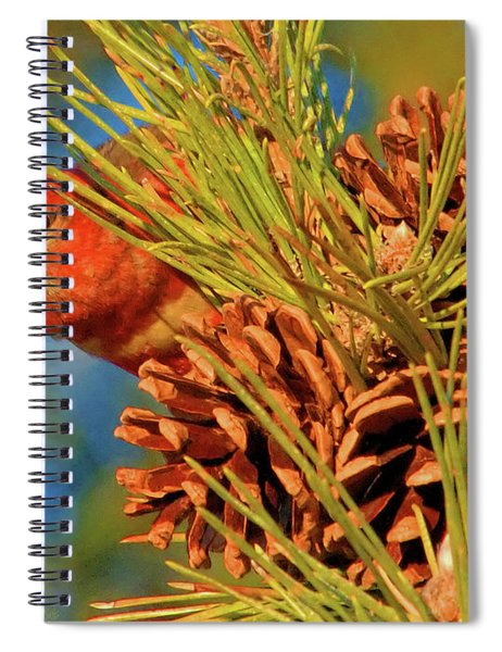 White-winged Crossbill Spiral Notebook