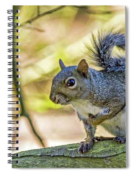 Who, Me? Spiral Notebook
