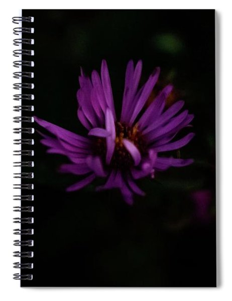 Wholeness Spiral Notebook