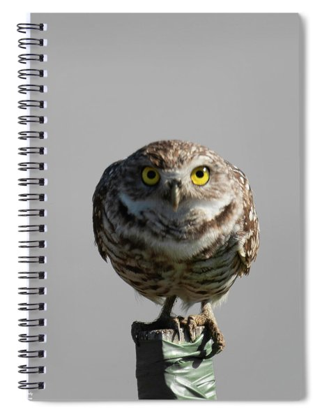Whooo Are You Spiral Notebook