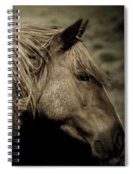 Wild Mustangs Of New Mexico 13  Spiral Notebook