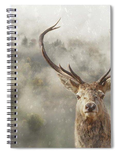 Wild Nature - Stag Spiral Notebook