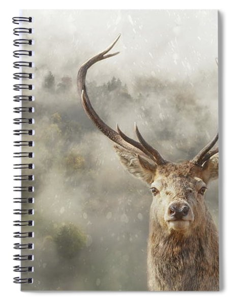 Wild Nature - Stag Spiral Notebook