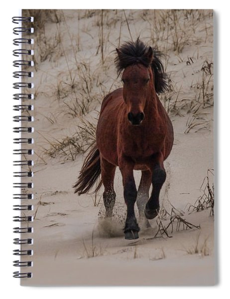 Wild Pony Spiral Notebook