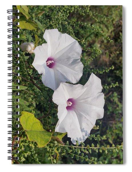 Wild Potato Spiral Notebook