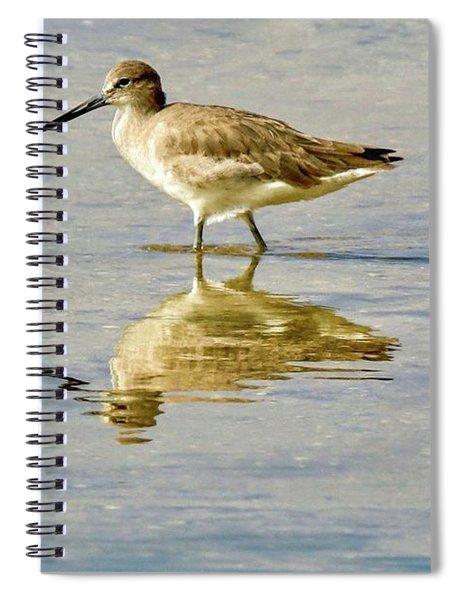 Willet  Spiral Notebook