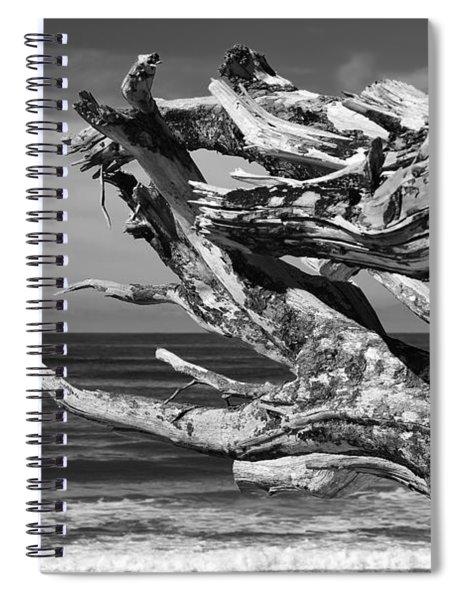 Wind Drift Spiral Notebook