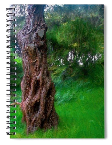 Wind In The Cedar Spiral Notebook
