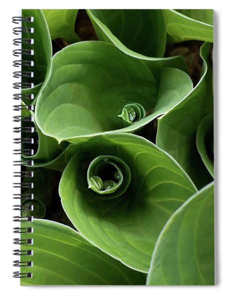 Window Into A World Spiral Notebook