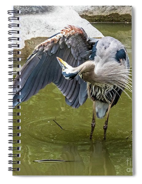 Wing Cleaning Spiral Notebook