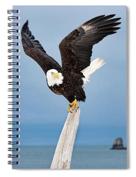 Winged Sentry Spiral Notebook