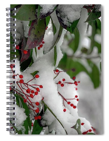 Winter Berries Spiral Notebook