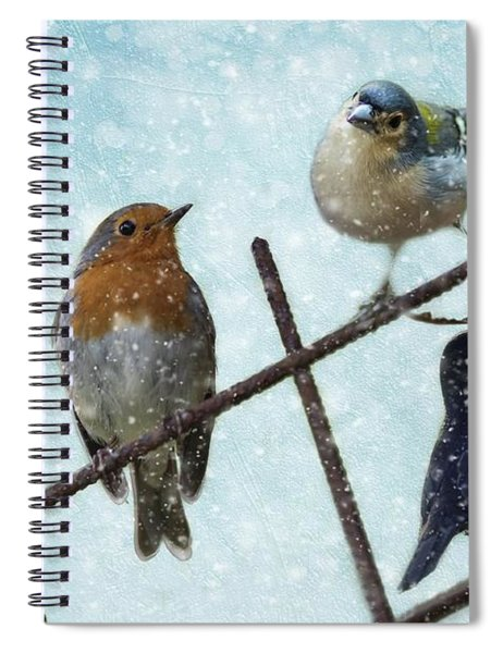 Winter Birds Spiral Notebook