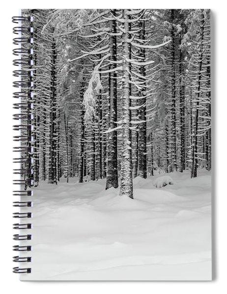 winter forest, Harz Spiral Notebook