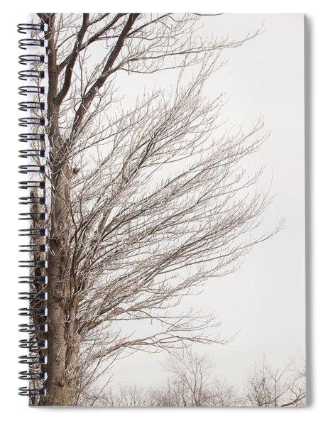 Winter Hoarfrost Spiral Notebook