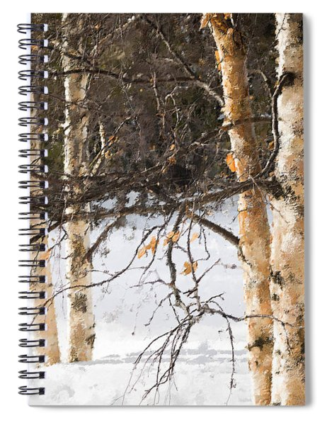 Winter In Canada Spiral Notebook