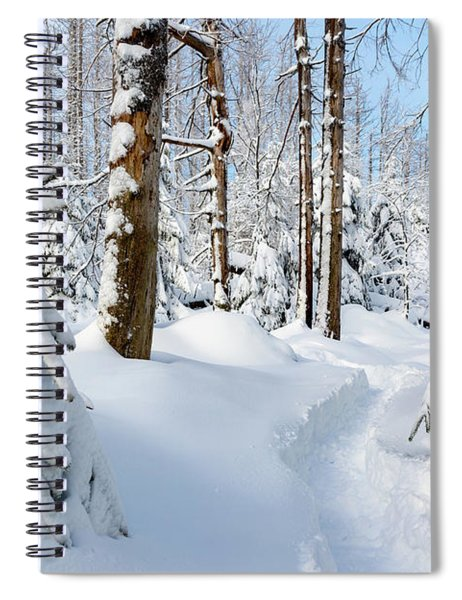winter path, Harz Spiral Notebook