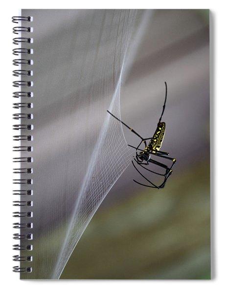 Winter Spider Spiral Notebook