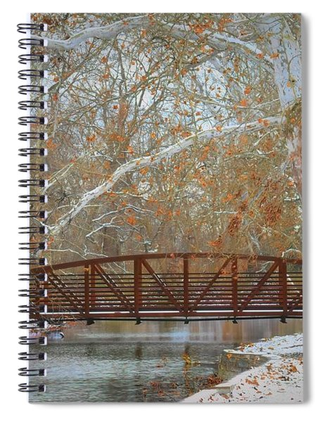 Winter Sycamores Spiral Notebook