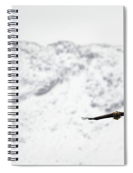 Winter White-tailed Eagle Spiral Notebook