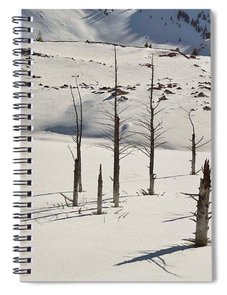 Wintertime At Quake Lake Spiral Notebook