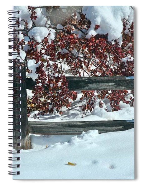 Wintery Fall Spiral Notebook