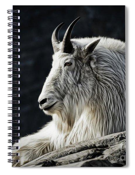 Wisdom From Up High Spiral Notebook