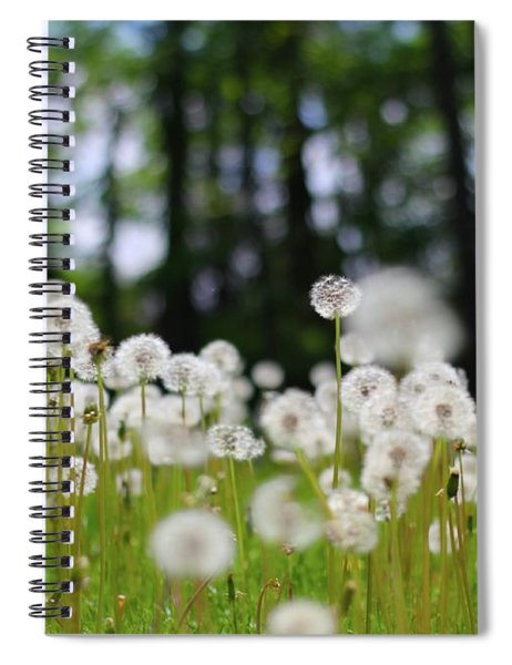 Wishes And Dreams Spiral Notebook