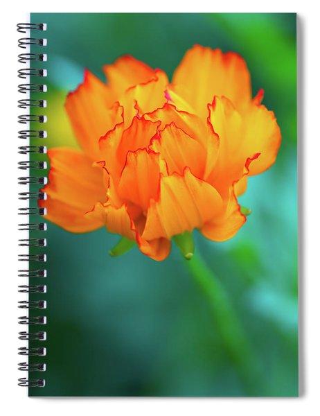 Wispy Orange Spiral Notebook