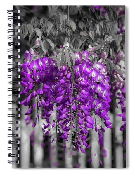 Wisteria Falling Spiral Notebook