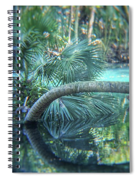 Witnessing Nature Spiral Notebook