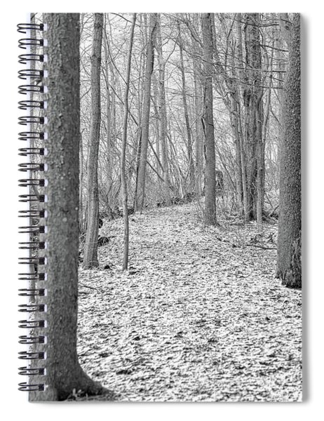 Spiral Notebook featuring the photograph Woodland Trail by Rod Best