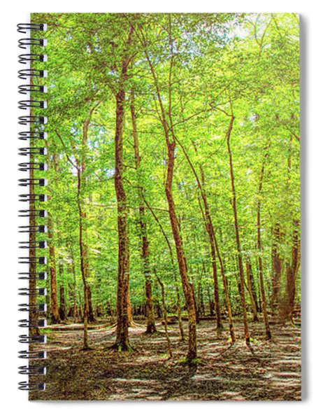 Woodlands Expanse Spiral Notebook