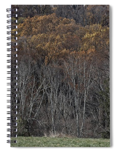 Woods Spiral Notebook