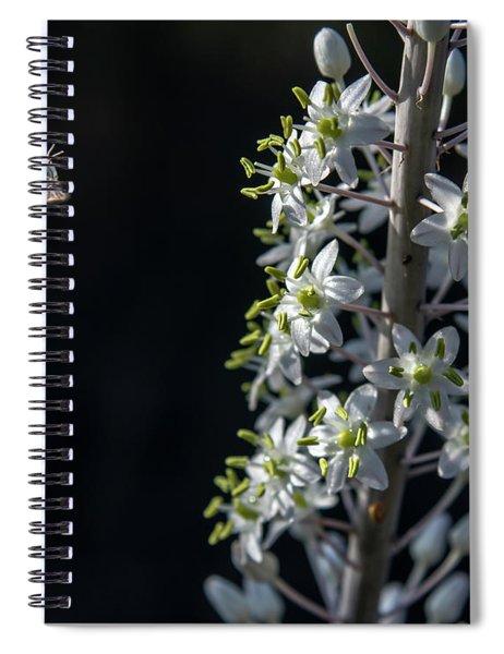 Spiral Notebook featuring the photograph Working Bee by Arik Baltinester