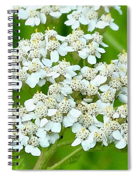 Yarrow And Friend Spiral Notebook