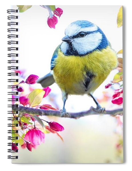 Yellow Blue Bird With Flowers Spiral Notebook