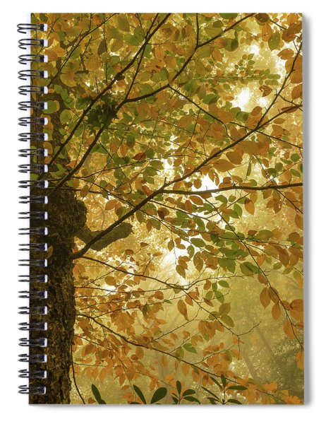 Yellow Fall Leaves - Blue Ridge Parkway Spiral Notebook