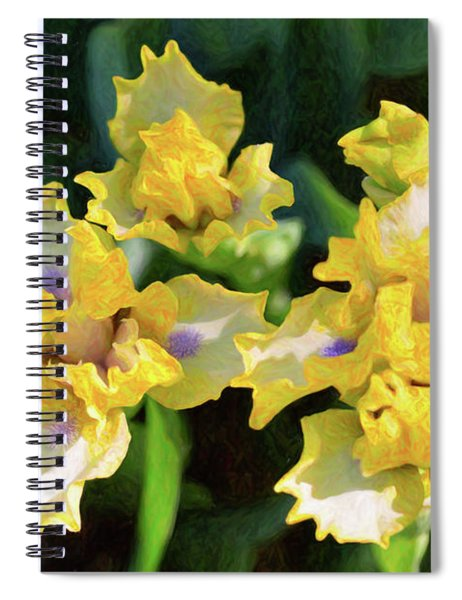 Yellow Irises - Joyful Reunion - By Omaste Witkowski Spiral Notebook
