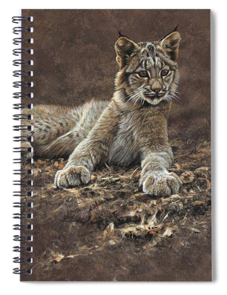 Young Bobcat By Alan M Hunt Spiral Notebook by Alan M Hunt