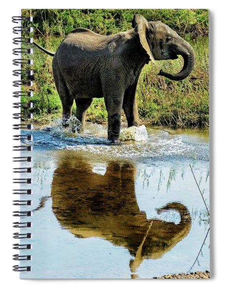 Young Elephant Playing In A Puddle Spiral Notebook