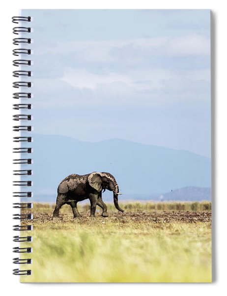 Young Elephant Walking Alone In Amboseli Kenya Spiral Notebook