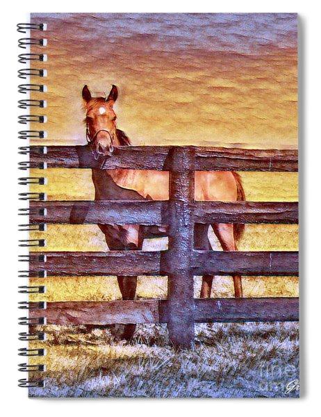 Young Kentucky Thoroughbred Spiral Notebook