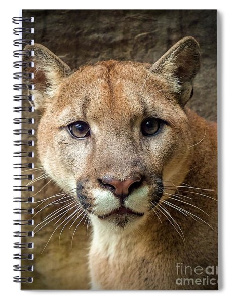 Young Puma Spiral Notebook